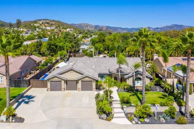 1315 Deerbrook Dr, San Marcos, CA 92069 (#190050847) :: Allison James Estates and Homes