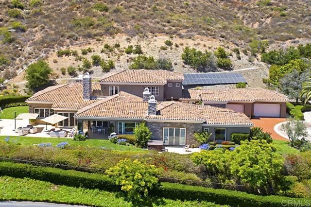 17644 Las Repolas, Rancho Santa Fe, CA 92067 (#190052604) :: Allison James Estates and Homes