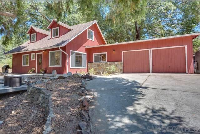 21142 State Park Road, Palomar Mountain, CA 92060 (#190055964) :: Neuman & Neuman Real Estate Inc.