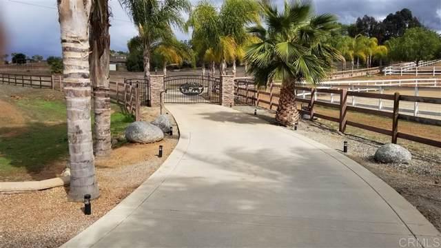 20225 Rustic Villa Rd, Ramona, CA 92065 (#190056973) :: Neuman & Neuman Real Estate Inc.