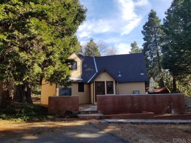 32875 Birch Hill Rd, Palomar Mountain, CA 92060 (#190064554) :: Neuman & Neuman Real Estate Inc.