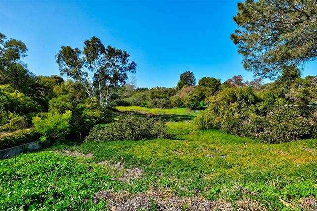 4269 Hillside Drive #1 #1, Carlsbad, CA 92008 (#200003929) :: Keller Williams - Triolo Realty Group