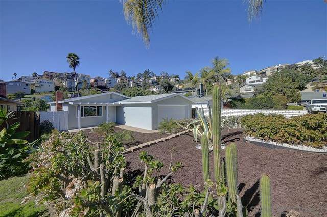 1610 Capistrano Ave, Spring Valley, CA 91977 (#200006275) :: Allison James Estates and Homes