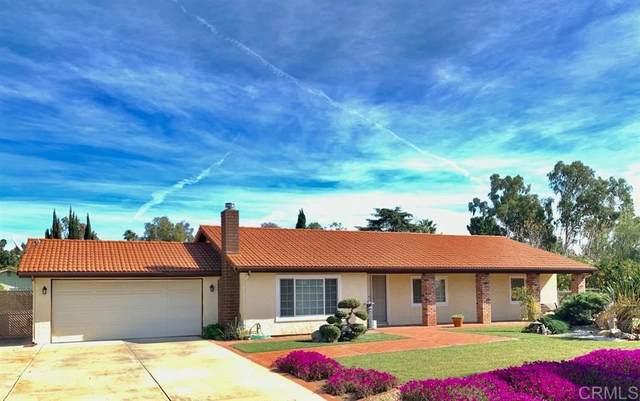 156 Amigos Way, Fallbrook, CA 92028 (#200006311) :: Neuman & Neuman Real Estate Inc.