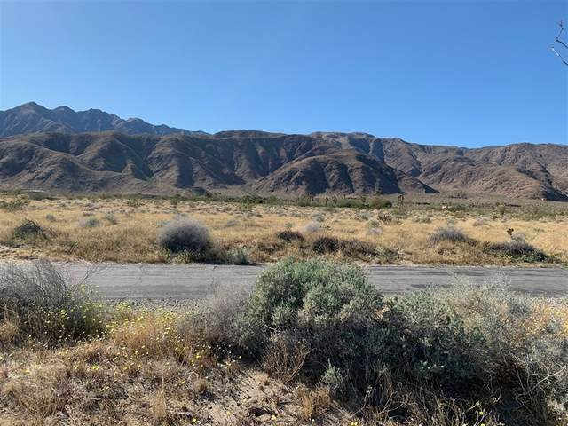 59 Indian Head Ranch Rd #59, Borrego Springs, CA 92004 (#200009298) :: Neuman & Neuman Real Estate Inc.