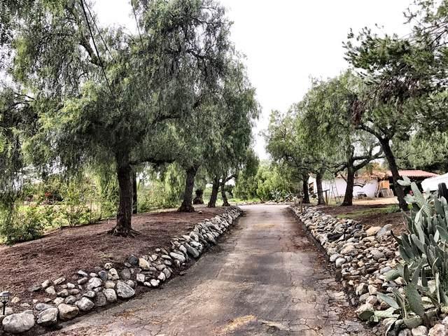2456 Gum Tree Lane, Fallbrook, CA 92028 (#200010890) :: Keller Williams - Triolo Realty Group