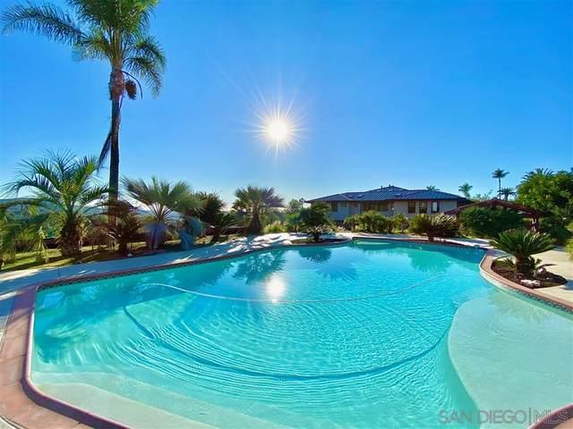 9480 La Cuesta Drive, La Mesa, CA 91941 (#200012628) :: Keller Williams - Triolo Realty Group