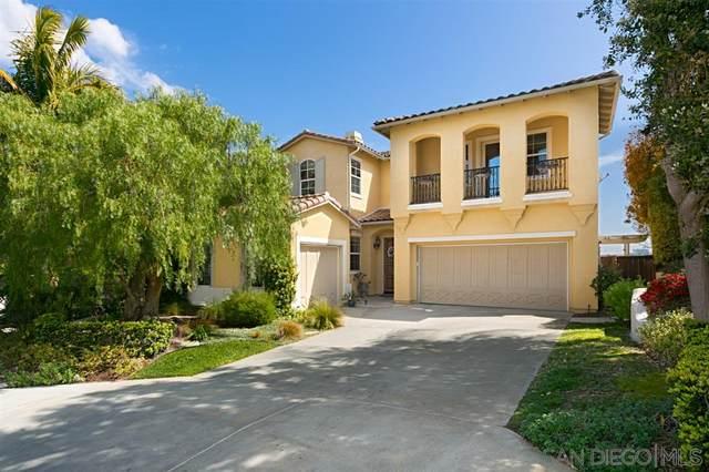 10441 Abalone Landing Terrace, San Diego, CA 92130 (#200015517) :: Neuman & Neuman Real Estate Inc.