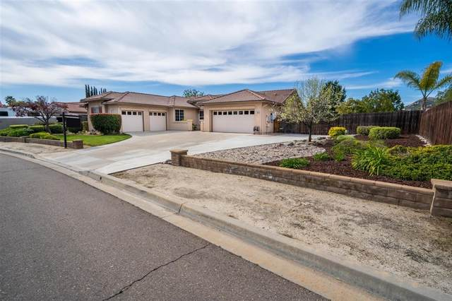 16531 Open View Rd, Ramona, CA 92065 (#200015949) :: Keller Williams - Triolo Realty Group