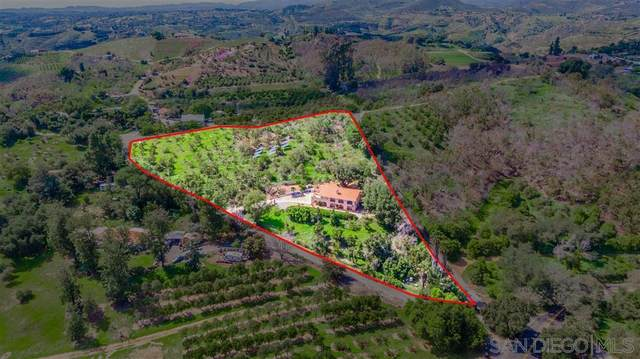 1042 Rice Canyon Rd, Fallbrook, CA 92028 (#200016190) :: Allison James Estates and Homes