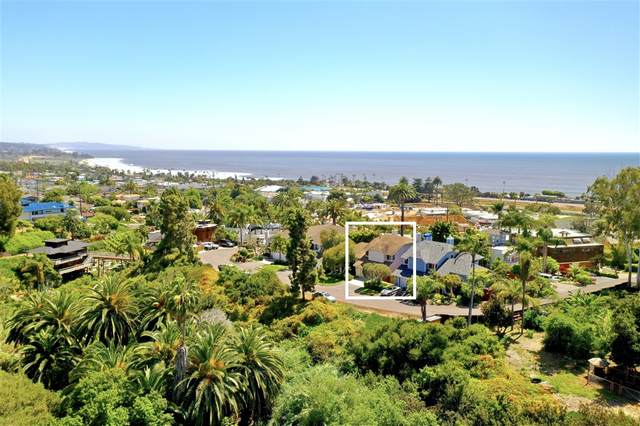 1810 Rubenstein Dr, Cardiff By The Sea, CA 92007 (#200021371) :: Keller Williams - Triolo Realty Group