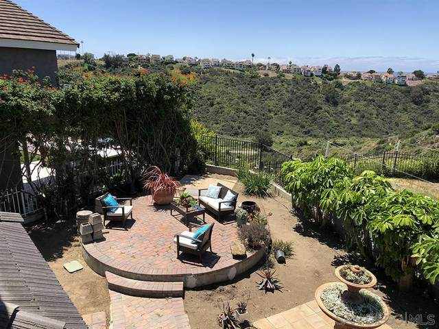 1790 SW Hawk View Drive, Encinitas, CA 92024 (#200021639) :: Neuman & Neuman Real Estate Inc.