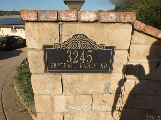 3245 Skytrail Ranch Rd, Jamul, CA 91935 (#200023253) :: Keller Williams - Triolo Realty Group