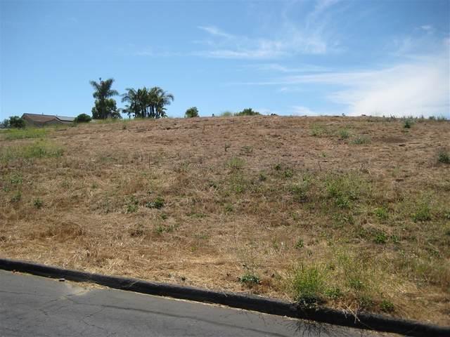0 Lorenzo Dr #61, Fallbrook, CA 92028 (#200029079) :: Neuman & Neuman Real Estate Inc.