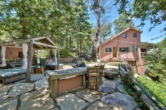 22272 Crestline, Palomar Mountain, CA 92060 (#200037430) :: Neuman & Neuman Real Estate Inc.