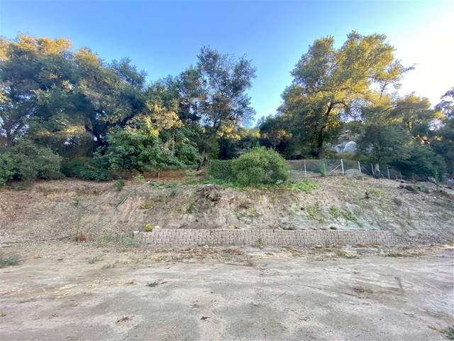 Woods Valley Rd #0, Valley Center, CA 92082 (#200037840) :: Whissel Realty