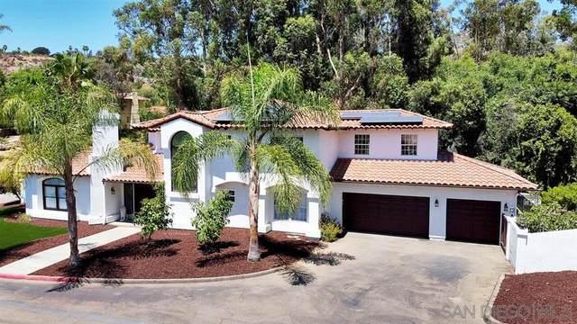 9742 Raspberry Ice Lane, La Mesa, CA 91941 (#200038138) :: SunLux Real Estate
