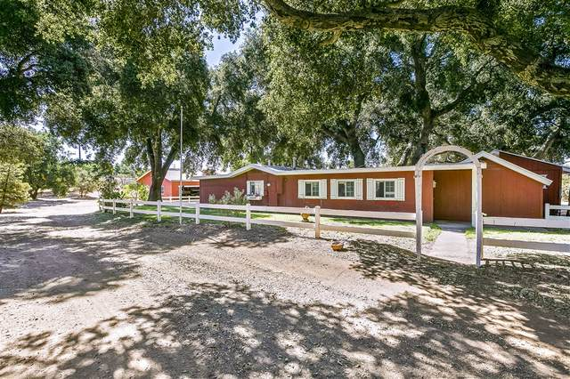 2237 - 2239 Buckman Springs Rd, Campo, CA 91906 (#200041378) :: Solis Team Real Estate