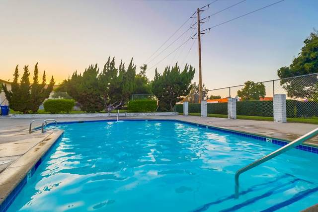 443 Bluffview Rd, Spring Valley, CA 91977 (#200043174) :: Compass