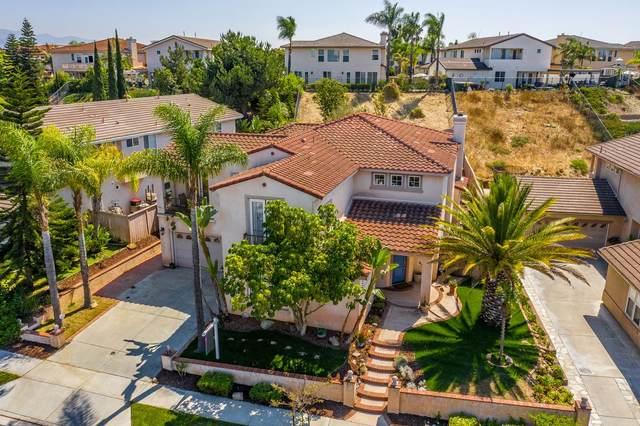 1076 Misty Creek St, Chula Vista, CA 91913 (#200043204) :: SunLux Real Estate