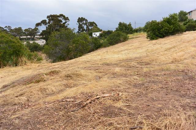 2 Acres On C Street & 40th Street See Supplement, San Diego, CA 92102 (#200043496) :: Cay, Carly & Patrick | Keller Williams