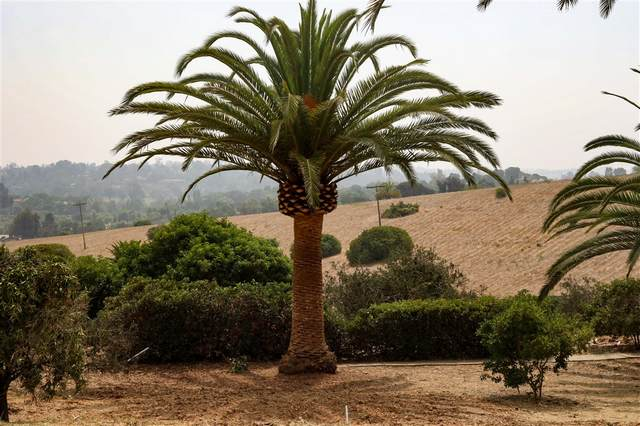17965 Via De Fortuna, Rancho Santa Fe, CA 92067 (#200045618) :: Farland Realty