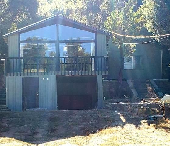 9800 Oak Grove Drive, Descanso, CA 91916 (#200052377) :: Solis Team Real Estate