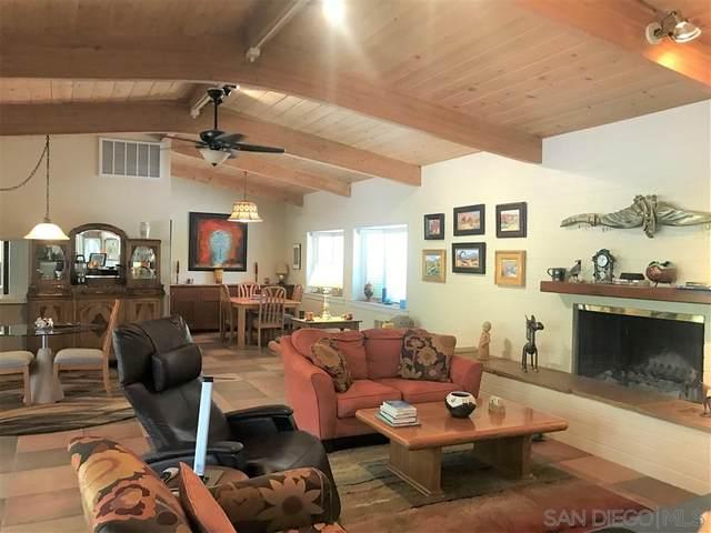 1506 De Anza Drive, Borrego Springs, CA 92004 (#210000035) :: Neuman & Neuman Real Estate Inc.