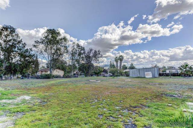 9945 Conejo Road, Santee, CA 92071 (#210003320) :: Neuman & Neuman Real Estate Inc.