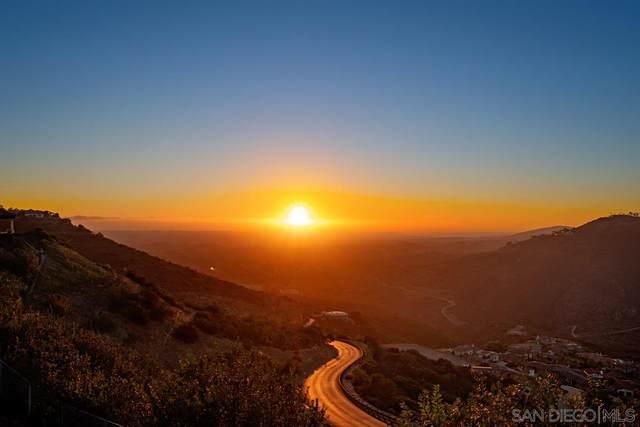 8036 Camino De Arriba, Rancho Santa Fe, CA 92067 (#210003323) :: Neuman & Neuman Real Estate Inc.