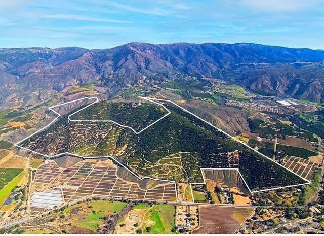 Sam's Mountain Rd #13, Pauma Valley, CA 92061 (#210006794) :: Neuman & Neuman Real Estate Inc.