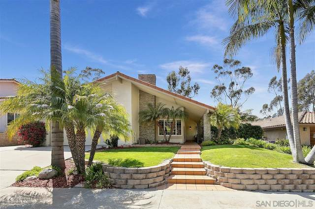 1342 Santa Luisa Dr, Solana Beach, CA 92075 (#210011869) :: The Legacy Real Estate Team