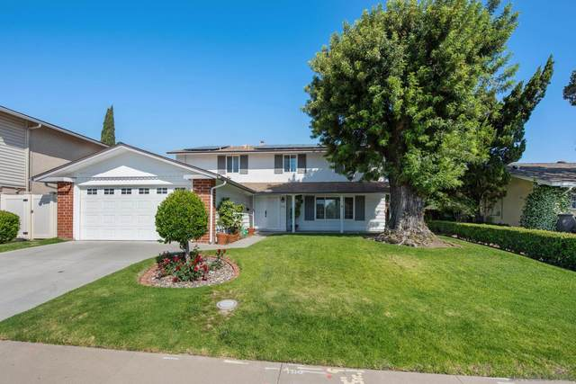 7338 Turnford Drive, San Diego, CA 92119 (#210014956) :: Keller Williams - Triolo Realty Group