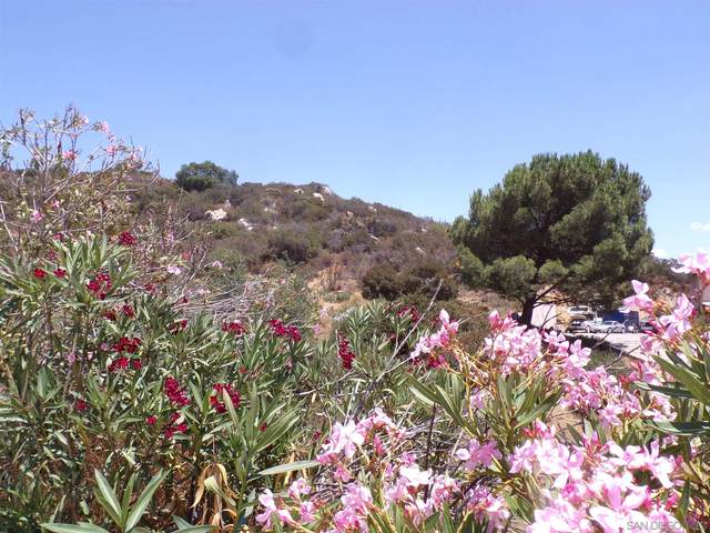 Lawson Valley Road #5, Jamul, CA 91935 (#210020720) :: COMPASS