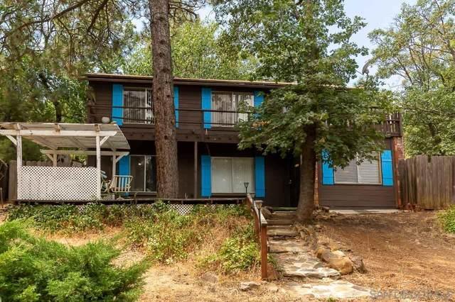 808 Manzanita Dr, Julian, CA 92036 (#210024005) :: Wannebo Real Estate Group
