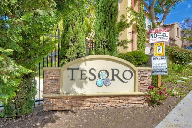 343 Steelhead Way, Vista, CA 92083 (#210025011) :: Solis Team Real Estate