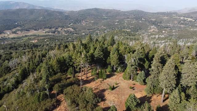 0000 Mountain Circle #0000, Julian, CA 92036 (#210025924) :: Solis Team Real Estate