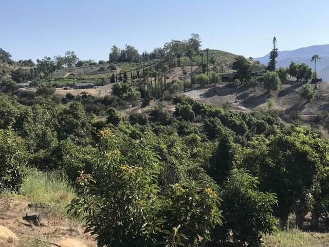 0 Monserate Hill Rd #24, Fallbrook, CA 92028 (#210026185) :: Neuman & Neuman Real Estate Inc.