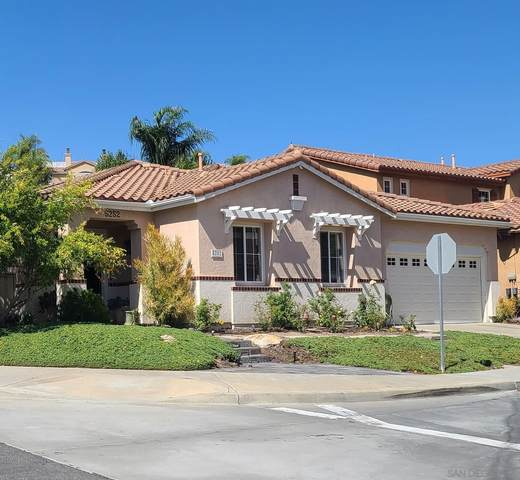 5252 Pearlman Way, San Diego, CA 92130 (#210026729) :: The Stein Group