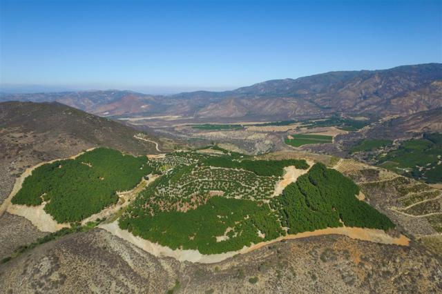 0 Pauma Ridge Rd #38, Pala, CA 92059 (#160038213) :: The Yarbrough Group