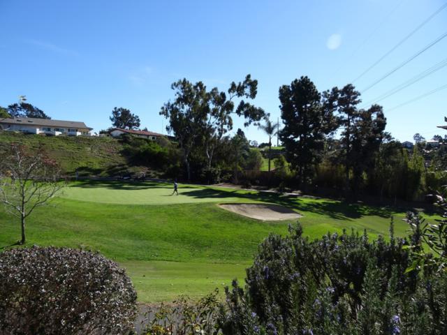 155 Mexicali Ct, Solana Beach, CA 92075 (#180005218) :: Neuman & Neuman Real Estate Inc.