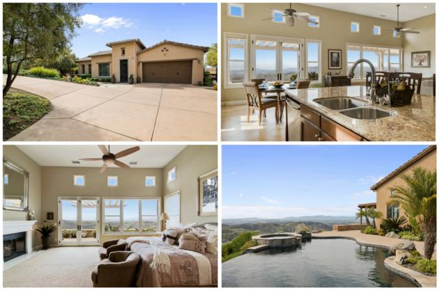 9516 Welk View Court, Escondido, CA 92026 (#180015858) :: Keller Williams - Triolo Realty Group