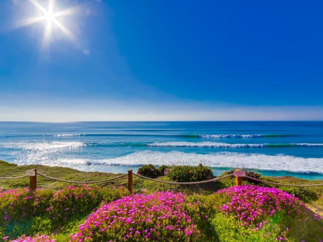 233 S Helix Ave. #12, Solana Beach, CA 92075 (#180018093) :: Harcourts Ranch & Coast