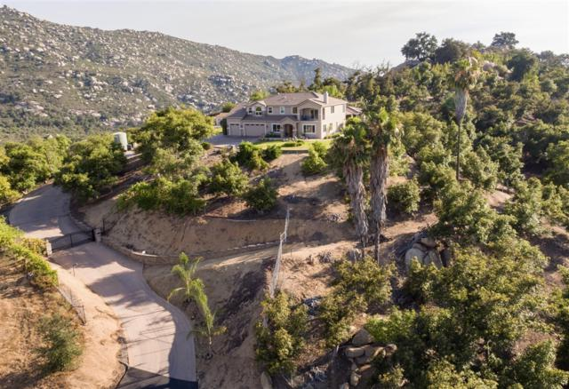 16313 Salida Del Sol, Ramona, CA 92065 (#180037544) :: Keller Williams - Triolo Realty Group