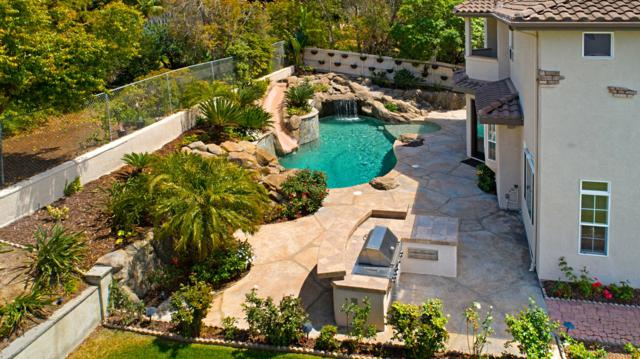 1165 Chestnut Avenue, Carlsbad, CA 92008 (#180037591) :: Ascent Real Estate, Inc.