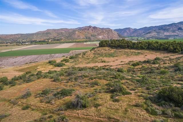 16291 Burkhard Hill Rd #1, San Pasqual Valley, CA 92025 (#180040763) :: Compass
