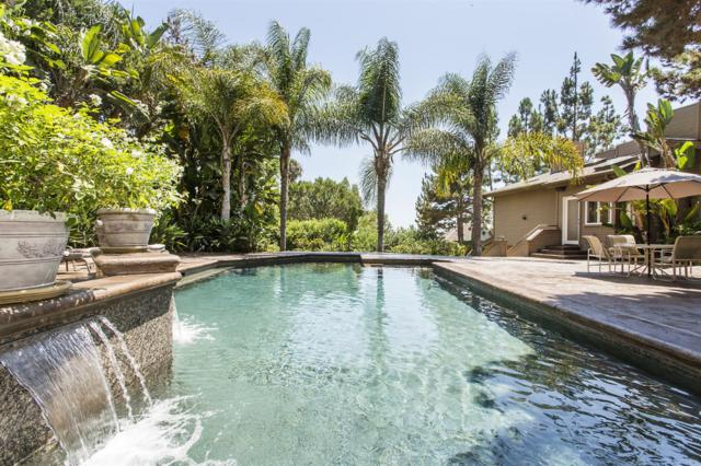 2910 Managua Place, Carlsbad, CA 92009 (#180044599) :: Keller Williams - Triolo Realty Group