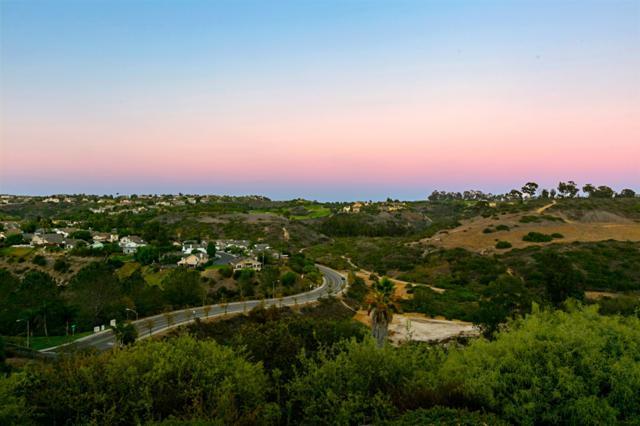 1403 Rainbow Ridge Ln, Encinitas, CA 92024 (#180049730) :: Neuman & Neuman Real Estate Inc.