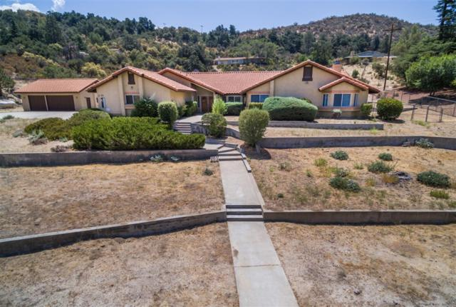 32711 Camino Moro, Warner Springs, CA 92086 (#180054110) :: Whissel Realty