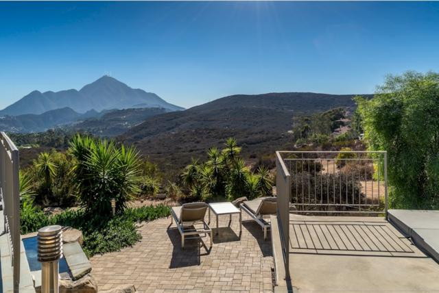 14667 Hidden Wood Rd, Jamul, CA 91935 (#180060092) :: The Yarbrough Group